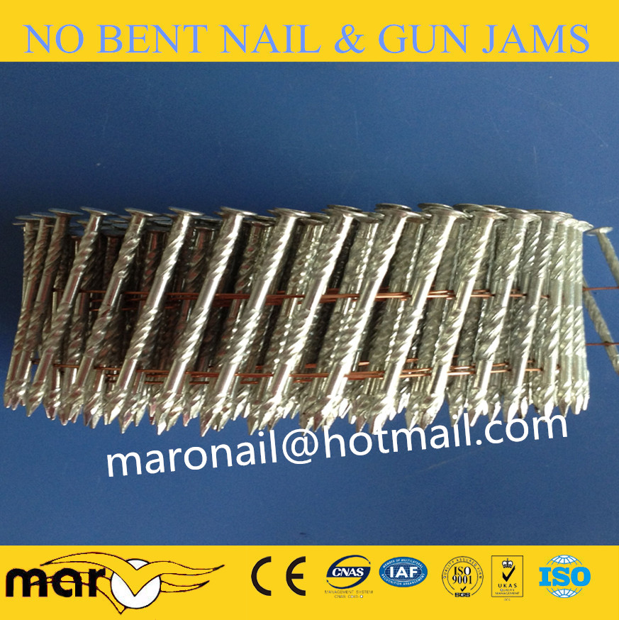 hot dipped galvanized coil nail